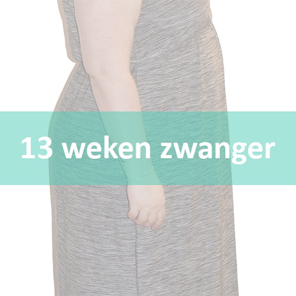 13wekenzwanger