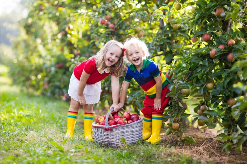 Met deze 60 leuke zomeractiviteiten gaat je kind zich zeker niet vermaken tijdens de zomervakantie. 60 leuke (en goedkope) dingen om te doen met elkaar.